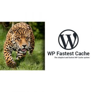 WP-Fastest-Cache-WordPress-Plugin