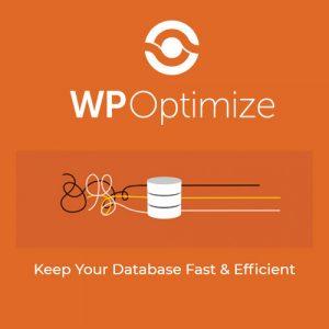 WP-Optimize-Premium